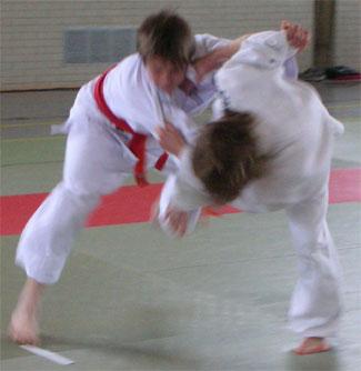2006_c
